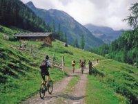 Mountainbike course