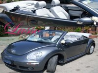 Maggiolone New Beetle