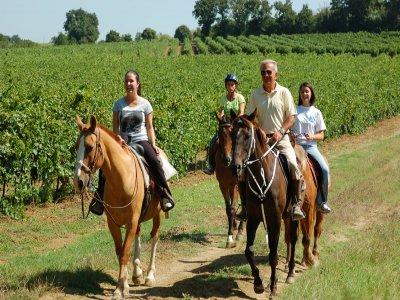 Passeggiata a Cavallo Ragusa