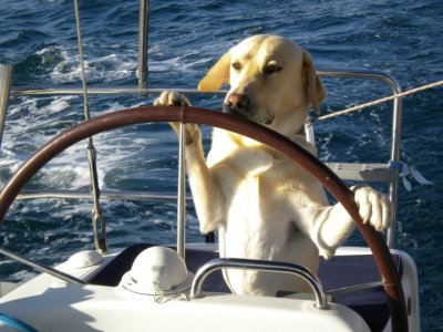 Vela Charter Cazzalaranda Yachting