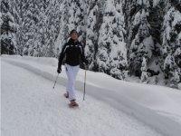 Nordic Walking even in winter