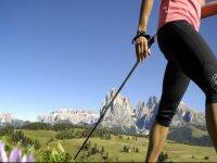 Nordik Walking in Piedmont