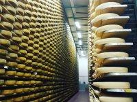 Un tour nel mondo del formaggio