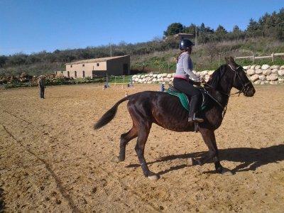 Il Mandorleto Passeggiate a Cavallo