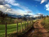 Paesaggi Tra Il Verde E L'Azzurro