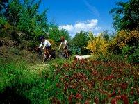Mountain Bike In Maremma