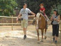 Monta A Cavallo Nel Nostro Maneggio