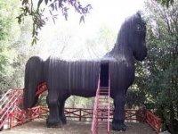 Entra Nel Cavallo Di Troia