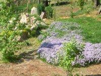 I Giardini di Proserpina
