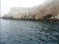 escursioni isole Tremiti