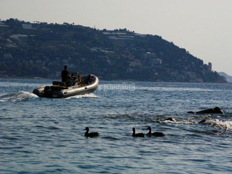 Il Mar Ligure