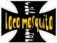Loco Mosquito Kitesurf