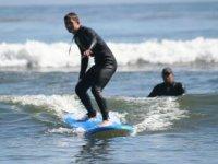 Surf Loco Mosquito