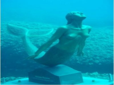 Pantalicando t.s. Diving