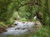 Risalita del fiume