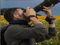 Fotografando la natura
