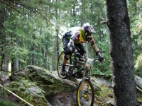 Mountain bike nel bosco