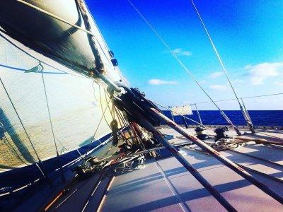 Nababbo Sail SRLS Vela