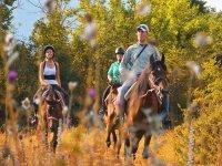 Escursioni a cavallo in collina