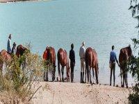 A cavallo nel parco nazionale d' Abruzzo