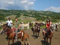 Sullo sfondo la Valle ed I Cavalli liberi