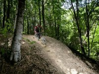 Mountainbike tra i boschi