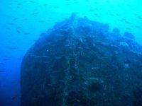 Among the wrecks