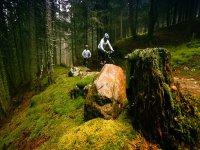 Attraversiamo boschi incantati