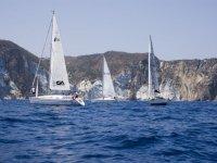Sea life - 999 - Pontian Archipelago