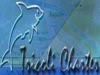 Tricoli Charter Diving