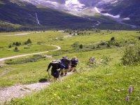 Trekking Sirdar