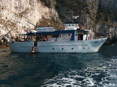 Marlin One Noleggio Barche