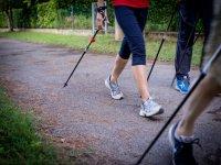 I pratici bastoncini per aiutarci a camminare