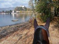 a cavallo sul lago