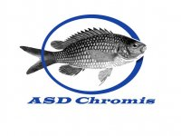 chromis diving club