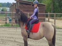 Pony per i più piccoli