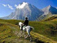 Ammirando il paesaggio
