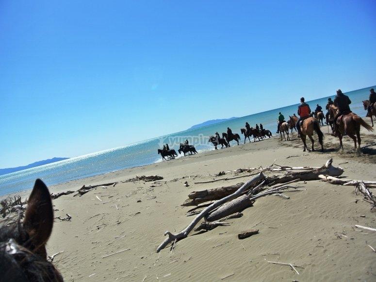 cavalli al mare