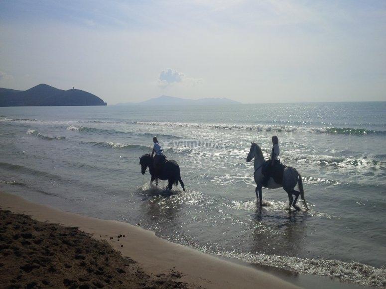 a cavallo al mare