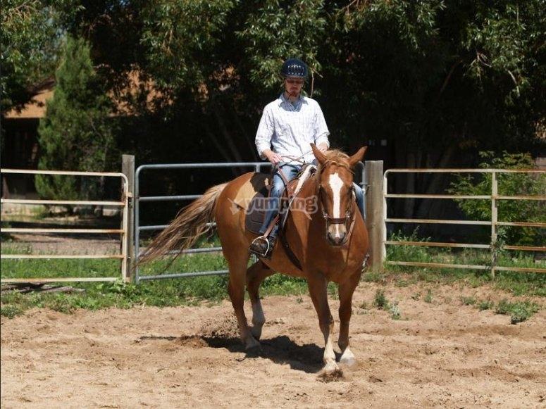 equitazione in Umbria