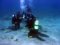 Diving in Messina
