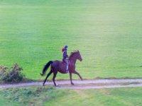 Passeggiata a cavallo Valle del Menotre di 2 ore