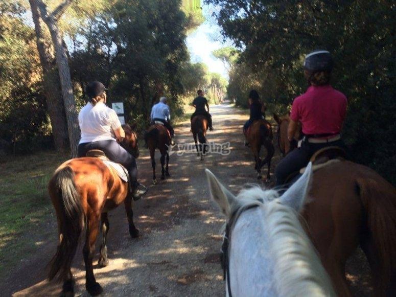 escursione equestre