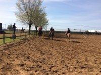 Il nostro campo pascolo e i nostri cavalli