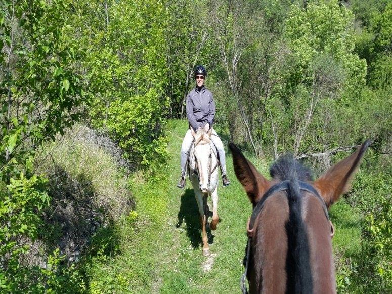 Tutti in fila a cavallo