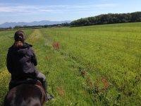 Galoppando nei nostri campi