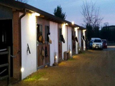Pensione cavalli in scuderia esterna