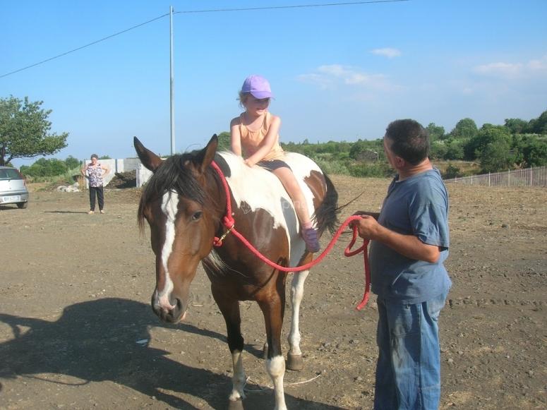Breve lezione di equitazione