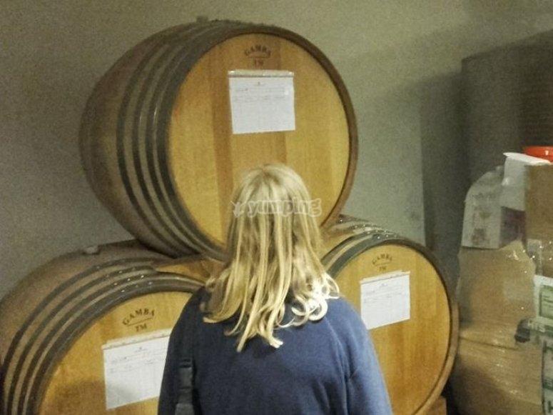 Vini conservati in botti di legno