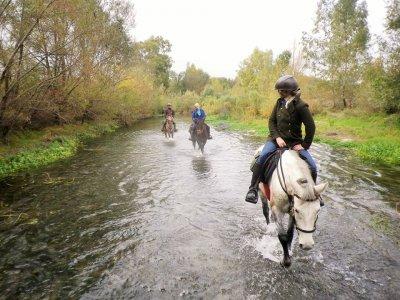 Horse trekking Madonie Park 3 days